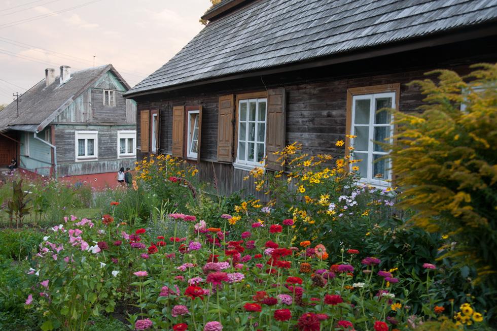 W ogródku kwiatowym